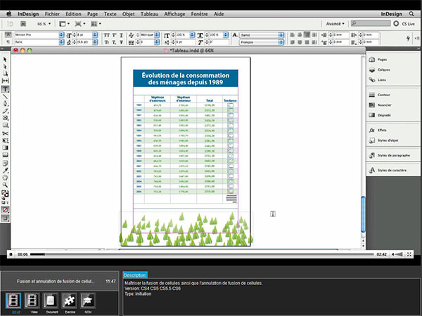 danslabox-e-learning-indesign-2
